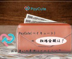 PayCute(ペイキュート) 相場 金額 お小遣い 条件